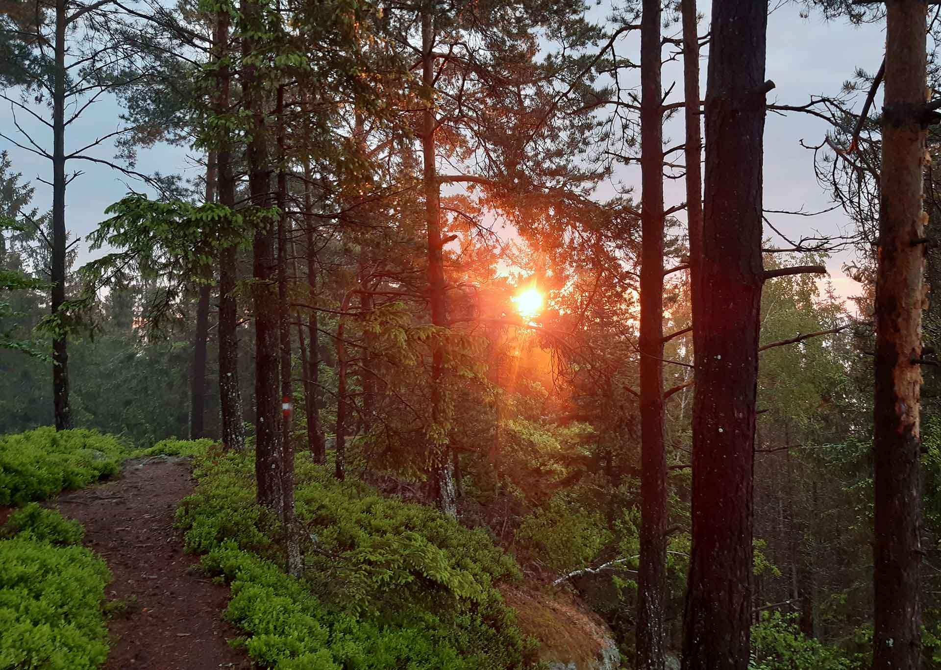 Sich auf den Weg machen… Morning Prayer